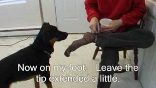 Tugging Part 2 : Train Your Service Dog To Pull Off Clothing, Bedding Etc