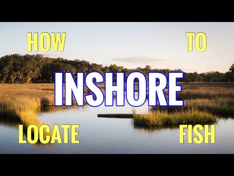 How To Locate Fish Inshore - How To Locate Saltwater Fish