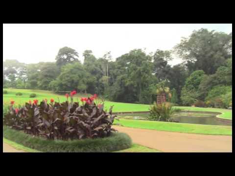 A Day Trip to Bogor