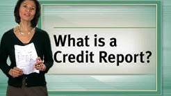 Credit Reporting: How It Works   TransUnion