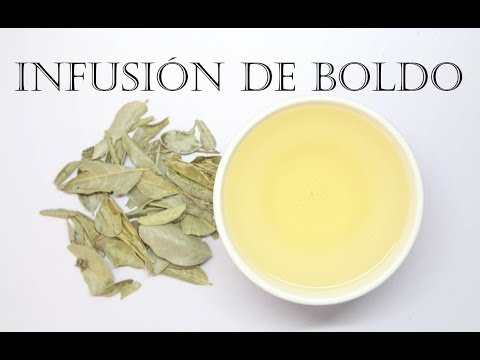 como preparar el té de boldo para adelgazar