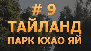 # 9 - Тайланд. Опасный парк Кхао Яй. Животные в естественной среде обитания.