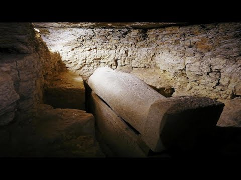 Recent tomb belonging to high priest And 40 sarcophagi has been discovered in Egypt 2,000 years old