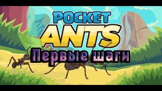 Почувствуй себе муравьём! ПЕРВЫЕ ШАГИ в Pocket Ants: Муравьиная Колония! #1