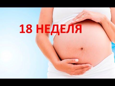 18 восемнадцатая неделя беременности