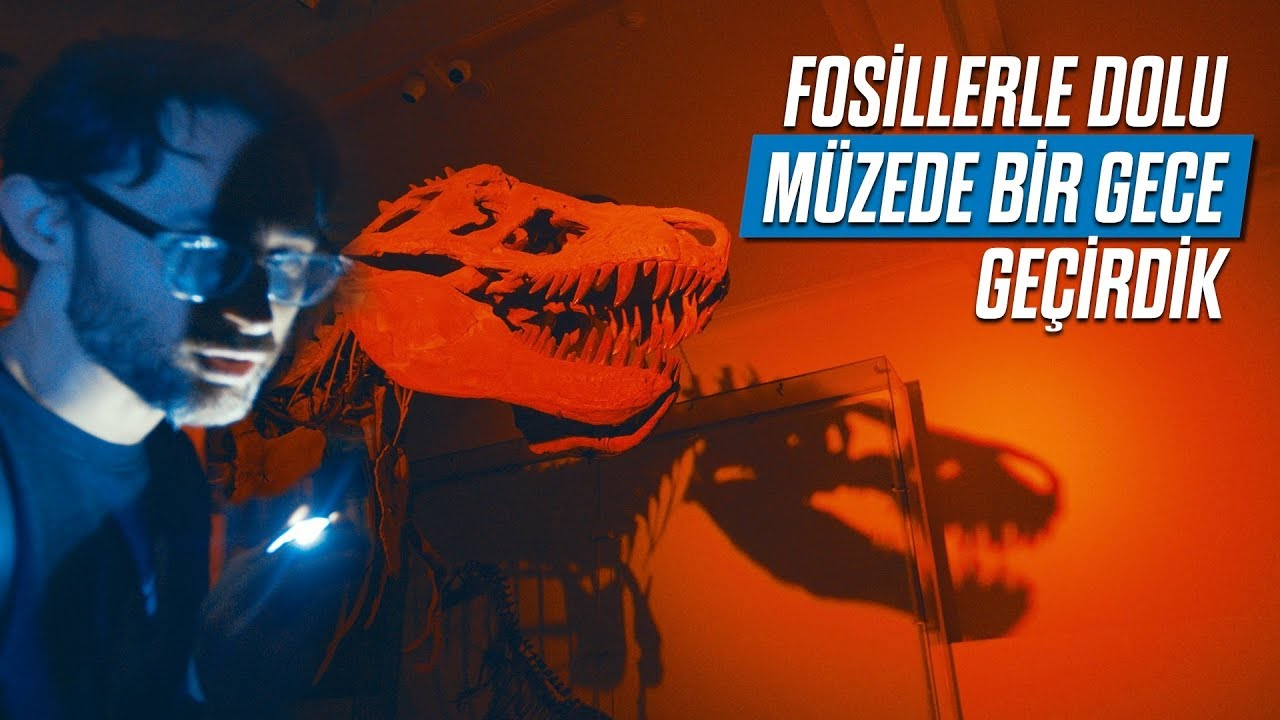 Fosillerle dolu müzede bir gece geçirdik!