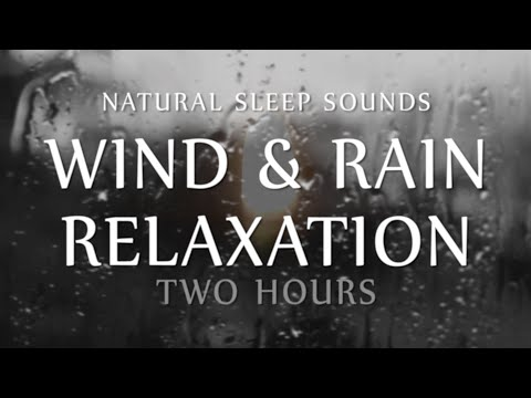 Wind and Rain Relaxation Two  Hours Natural Sleep Sounds (Wh