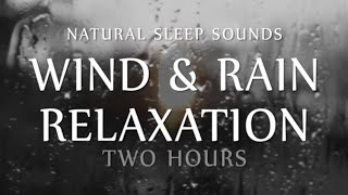 Repeat youtube video Wind and Rain Relaxation Two  Hours Natural Sleep Sounds (White Noise for Sleep, Study, Meditation)
