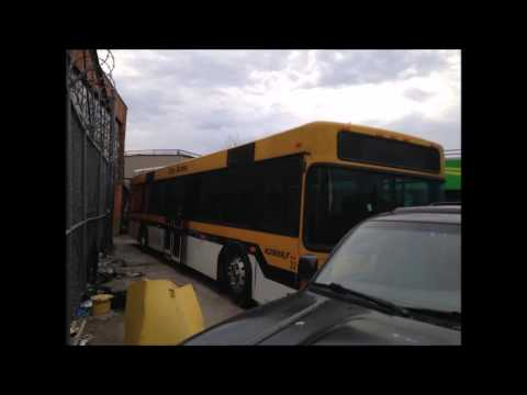 WARNING! The worst sightseeing bus company in NYC! #BoycottGoNyTours