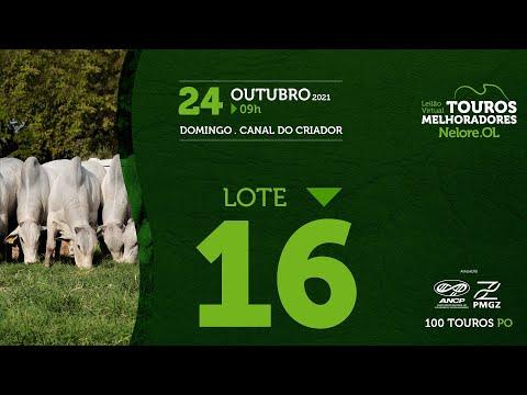 LOTE 16 - LEILÃO VIRTUAL DE TOUROS MELHORADORES  - NELORE OL - PO 2021
