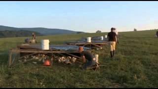 Joel Salatin's Chicken Tractor