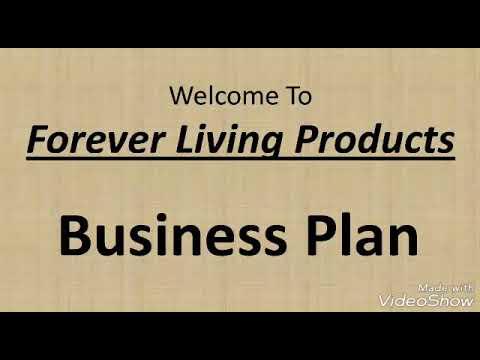 Flp Marketing Plan Ebook