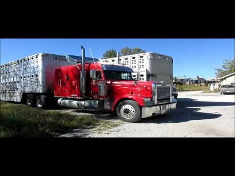 2003 Freightliner FLD 132XL Classic semi truck for sale | sold at auction November 17, 2015