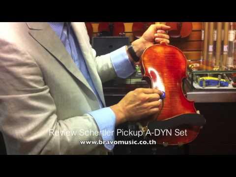 Review Schertler A-DYN Set