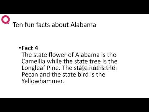Ten facts about Alabama | MY HEALTH | HEALTH TIPS