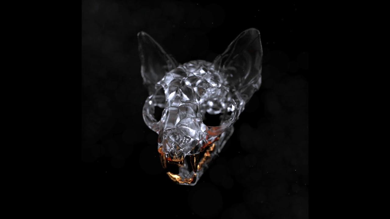 Darci - Blackout (Official Audio)