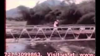 Thamara killi paadunnu - Moonnam Pakkam (1988) MG Sreekumar, KS Chithra, Ilayaraja.mp4
