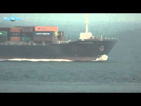 MERCHANT NAVY ITALIA CONTAINER SHIP VIDEO