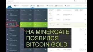 Minergate.com - майнинг Bitcoin Gold  GUI майнер и консольные майнеры для AMD и NVIDIA.