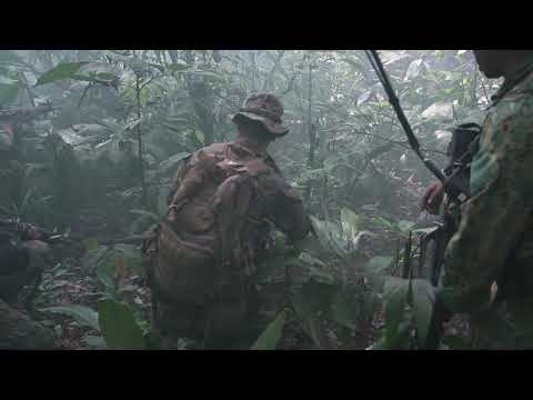 Royal Brunei Land Forces conduct a platoon attack range Brunei Jungle B-roll AUSTRALIA 10.18.2019