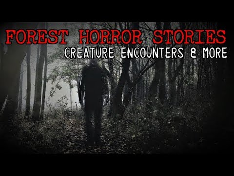 3 Very Creepy Forest Stories [Creature Encounters & MORE!]