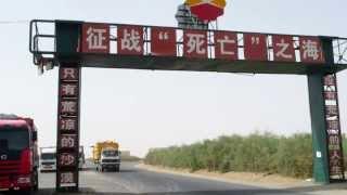 新疆 死亡之海 塔克拉馬干沙漠 胡楊林公園