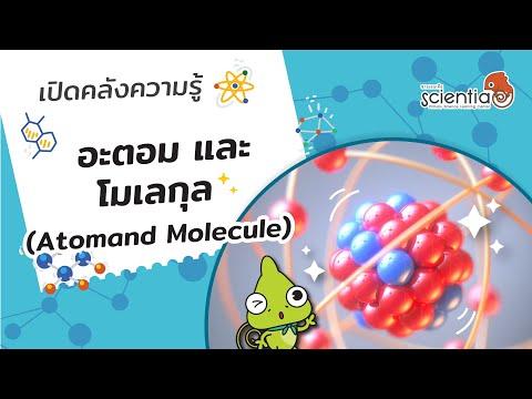 อะตอม และ โมเลกุล (Atom and Molecule) l Scientia