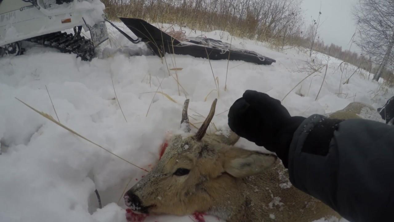 Ютуб охота на снегоходе фото 724-375