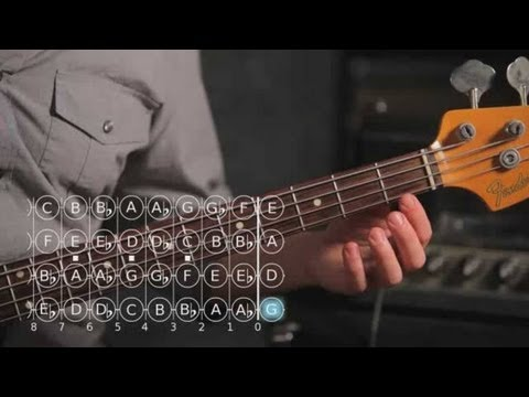 How to Play D ? / E Flat Major Scale | Bass Guitar
