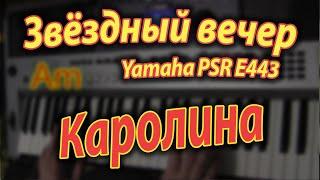 Каролина - Звёздный вечер Yamaha PSR E443