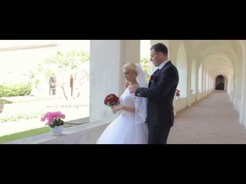 Vestuvių Filmo Ištraukos