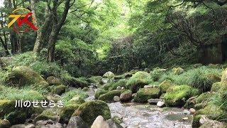 動画 茨城県のとある渓流のほとりでBBQ&車中泊しました 動画サムネイル