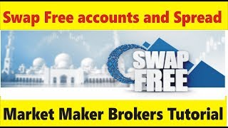 swap account and swap free Islamic accounts Spread Difference | Tani Forex basics Tutorial in Urdu