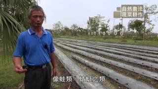 自然農法 蔬菜耕作