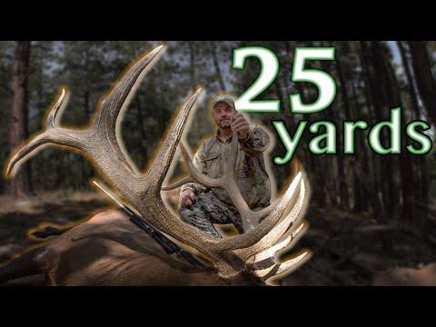 Hunter Dodges Charging Bull! Elk Hunting With Guy Eastman