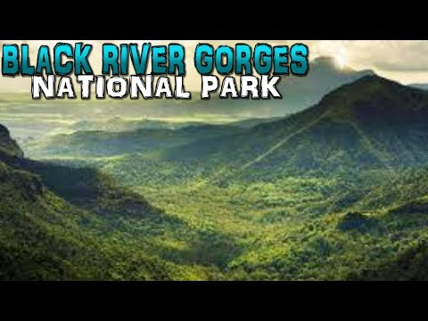 Black River Gorges National Park Mauritius 4K