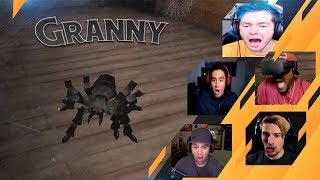 Gamers Reactions to Granny's Pet Spider