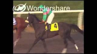 Zenyatta: Race 14, Breeders' Cup Classic 11/7/2009