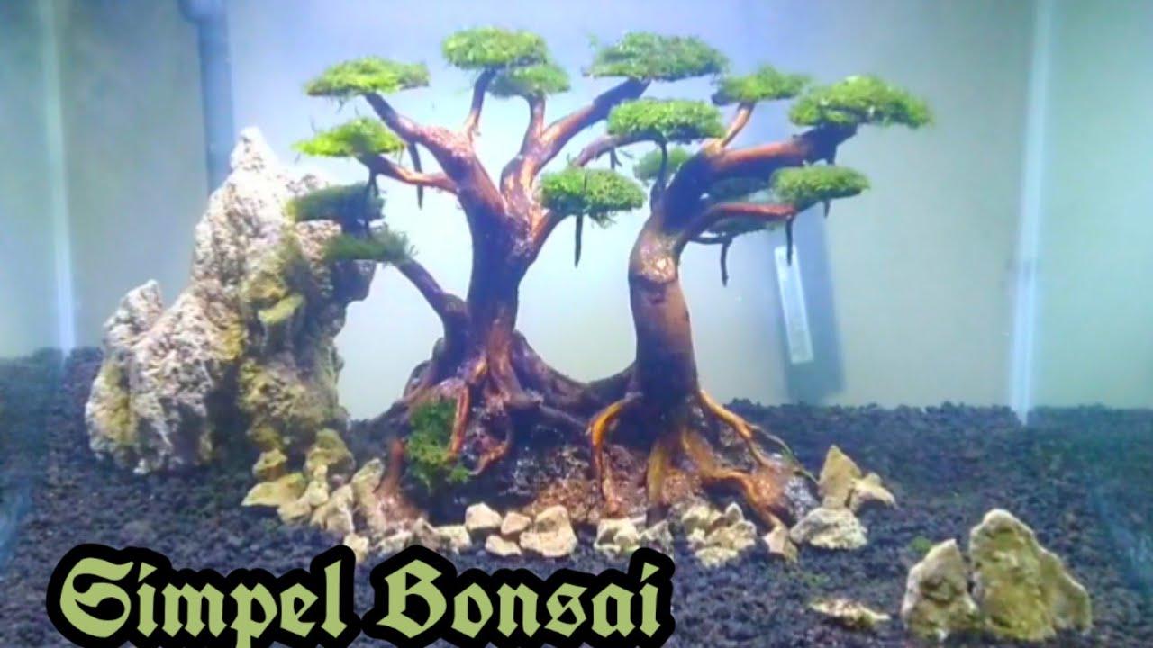 Setting Aquascape Pemula Tema Bonsai Youtube