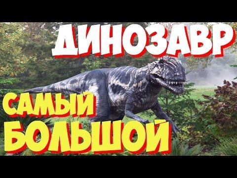 в хищника фото самый динозавр большой мире