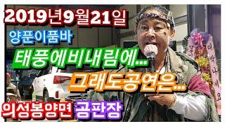 양푼이품바2019년9월21일  의성봉양면 이밴트
