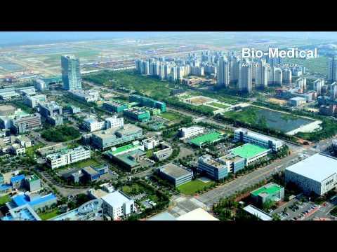 Incheon Free Economic Zone, Northeast Asia Economic Centralization