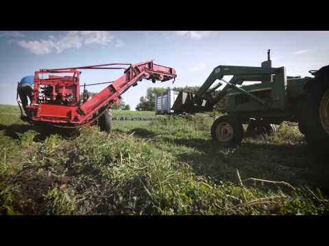 MPS Farm to School: Open Hands Farm