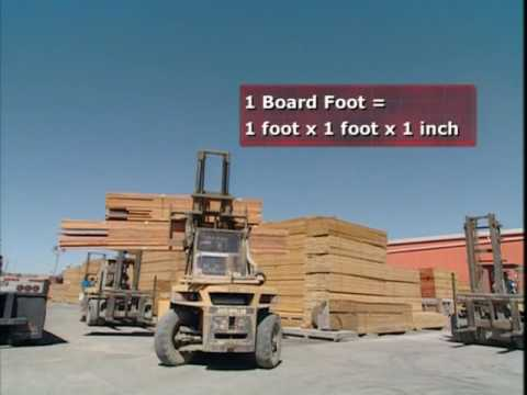 Modern Marvel Lumber Yard