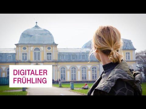 Social Media Post: Digitale Tipps für den Frühling - Netzgeschichten