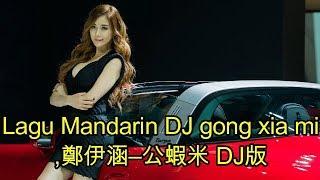 Lagu Mandarin DJ gong xia mi,鄭伊涵–公蝦米 DJ版