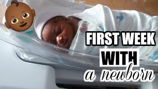 FIRST WEEK WITH A NEWBORN Life of Luch