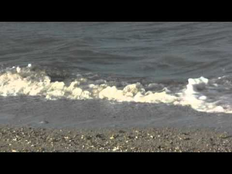 """""""Wave Sounds"""" 2 hours of Lapping Waves"""