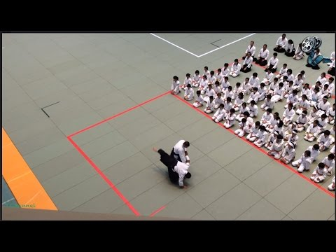 Great Aikido Techniques from Japanese Masters 合気道