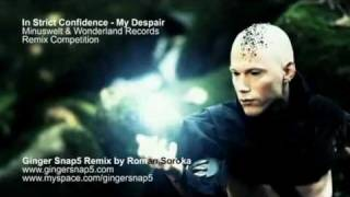 In Strict Confidence - My Despair (Ginger Snap5 Remix) WS.mpg